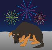Страх салютов у собак - что делать?