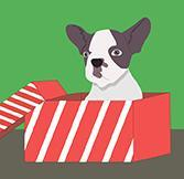 Животное в подарок: не только радость, но и ответственность